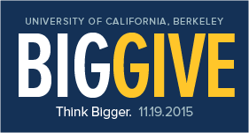 Big Give logo